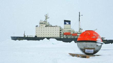 Arctic ARTICLE FEATURED